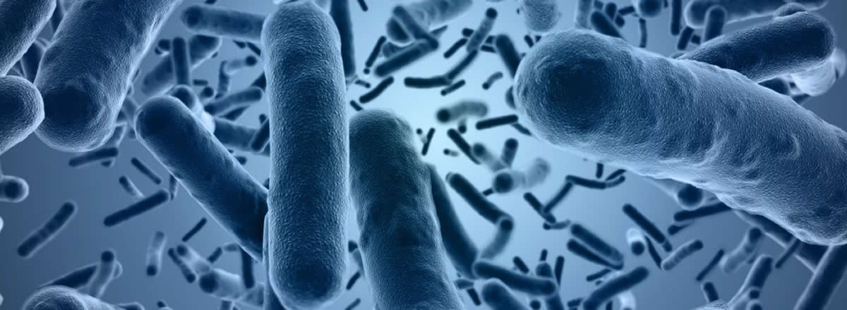 Legionella Risk Assessments Fife